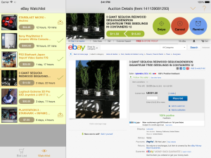 iPad eBay Watchlist
